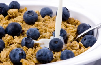 Bowl of cereal milk and blueberries