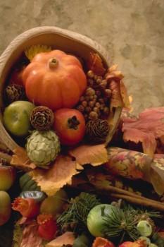 Thanksgiving pumpkin festive